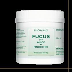 FUCUS-ANICE-FINOCCHIO -...